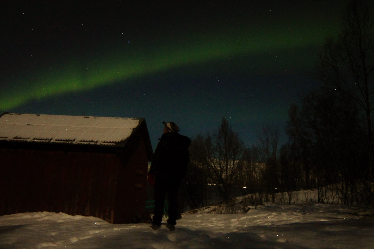 Northern Lights above forest and hut