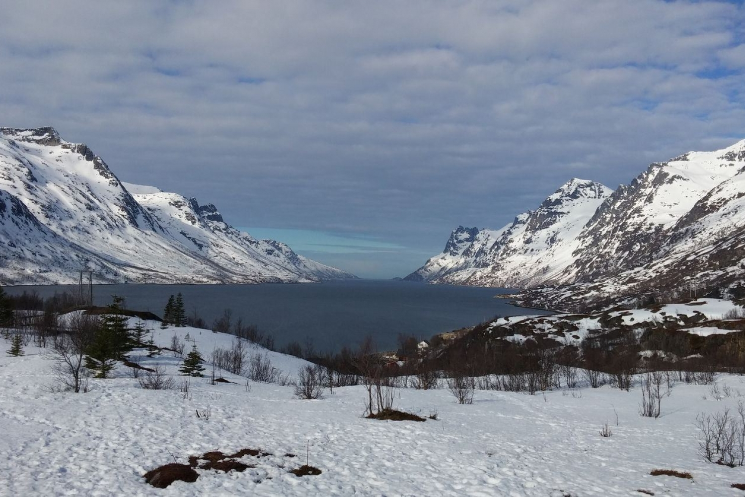 Fjord surrounded by snowy mountains