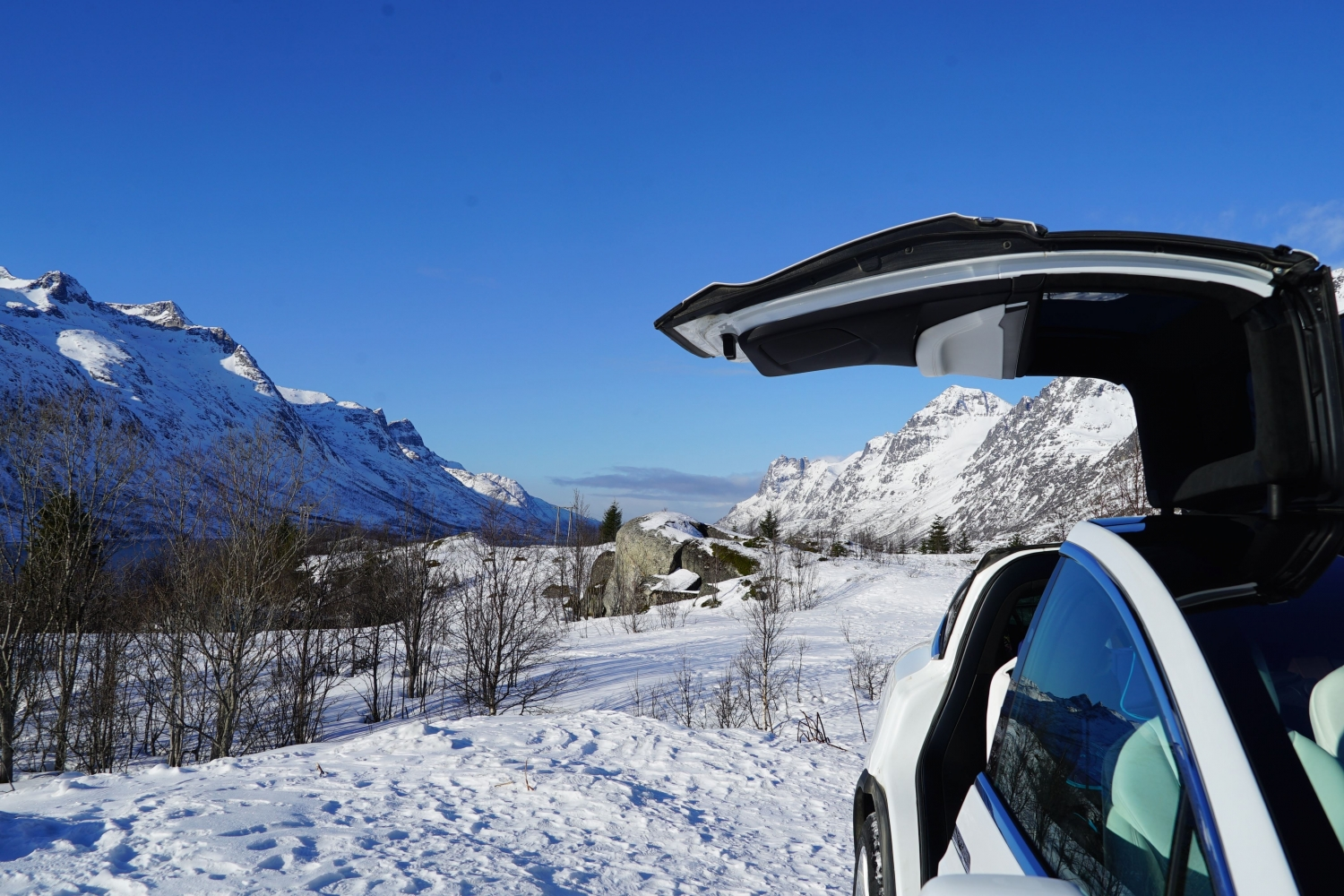 Tesla Model X in arctic winter landscape