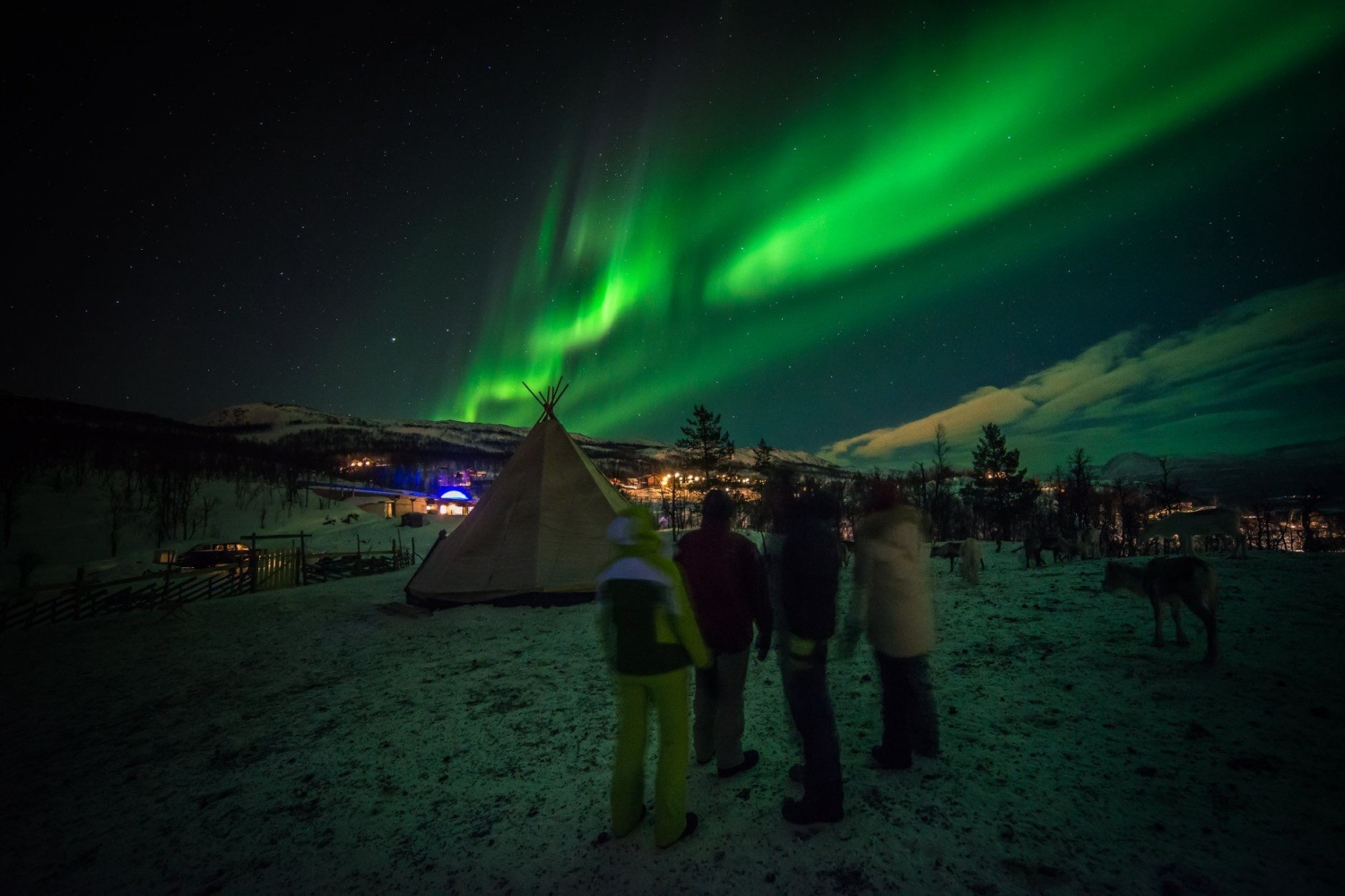 Persons watching the Northern lights, a sami lavvu in the background