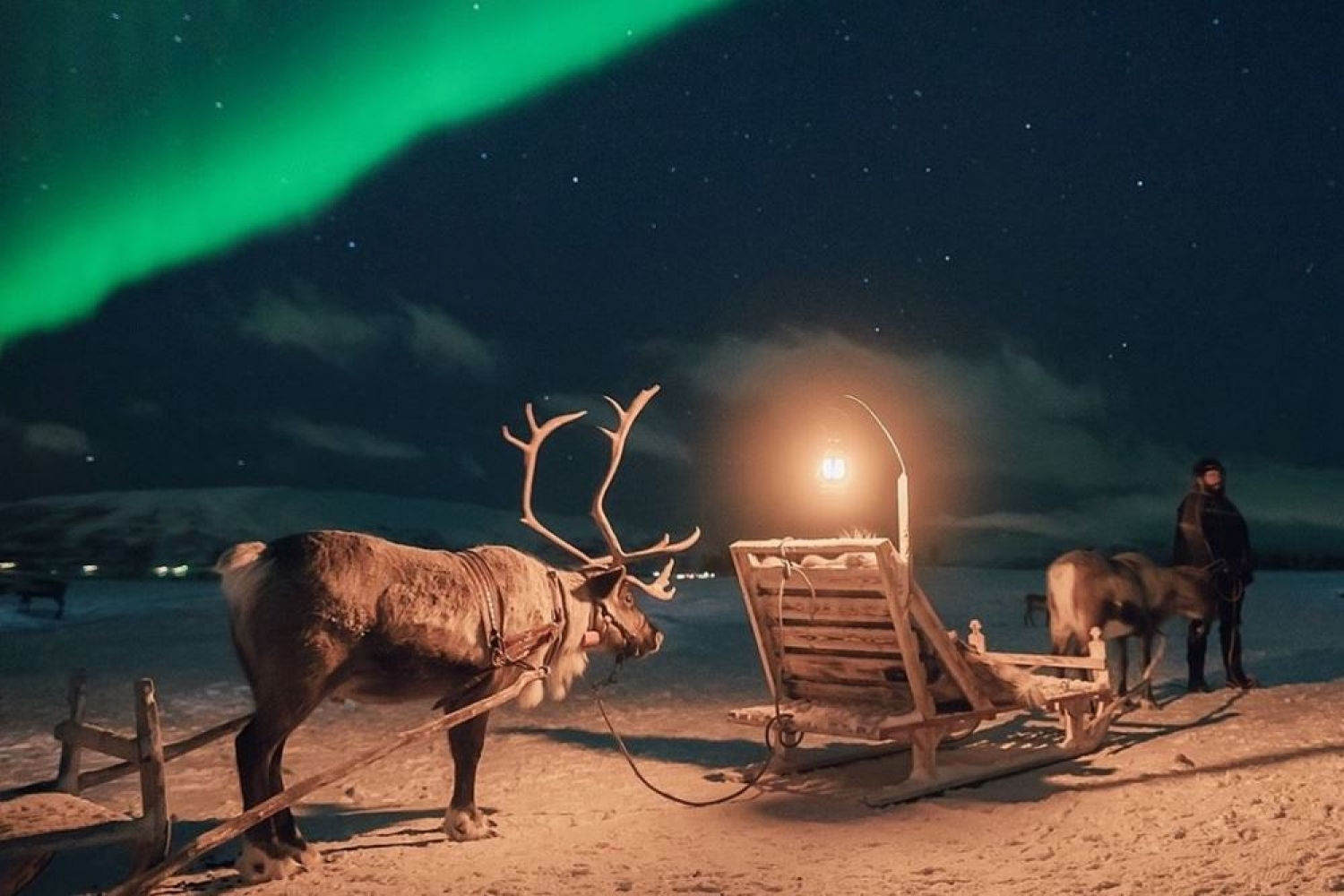 Reindeer sled with Nortern Lights in the background