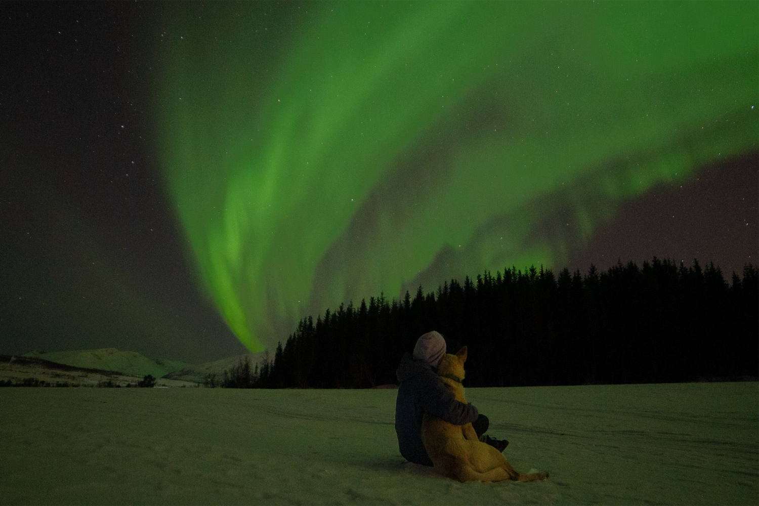 Person hugging a dog while watching the Northern Lights