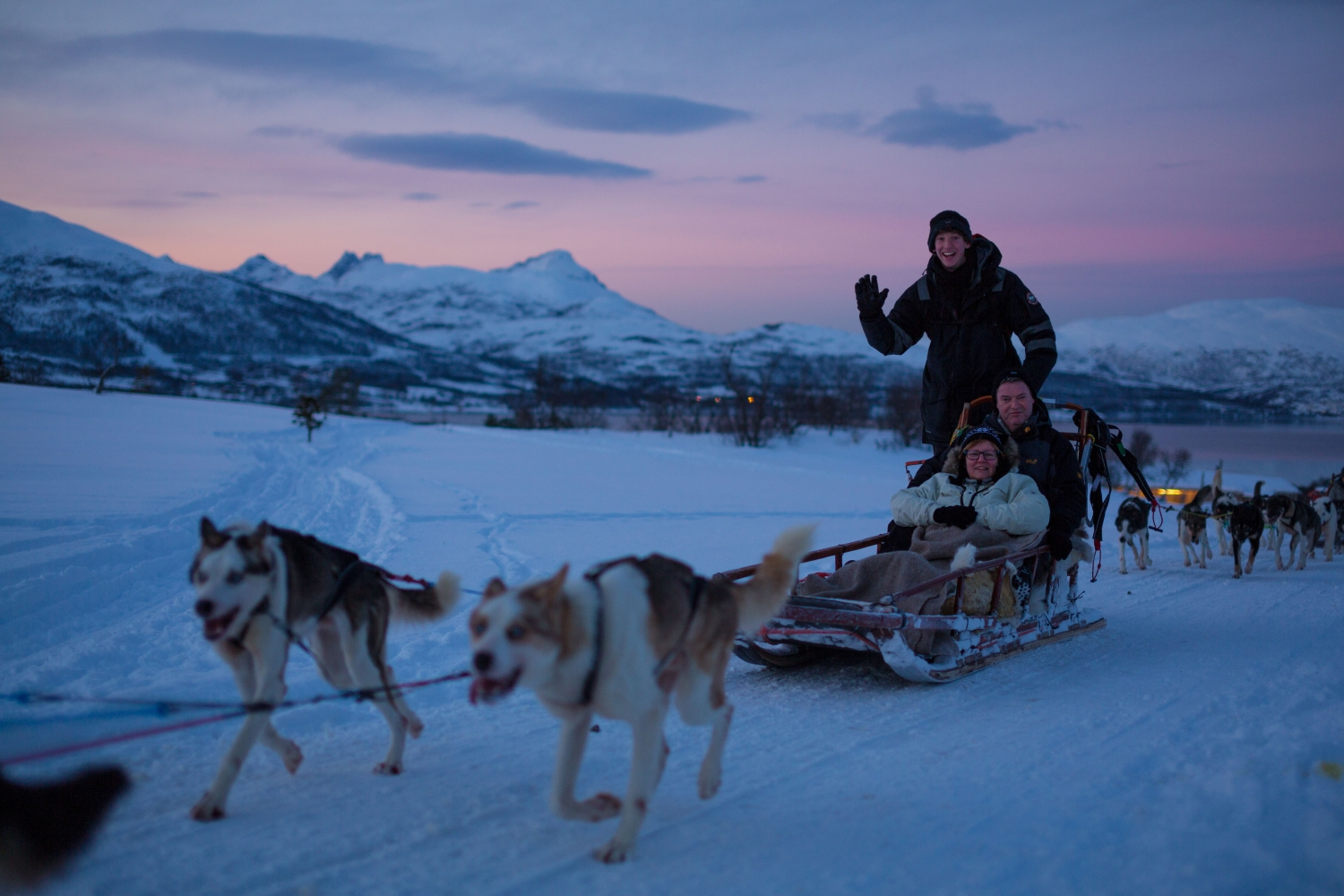 Dog sledding in afternoon light