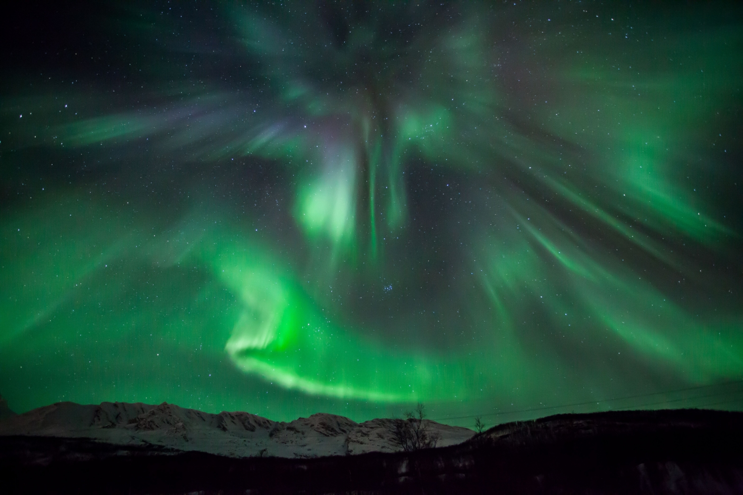 a sky full of northern lights
