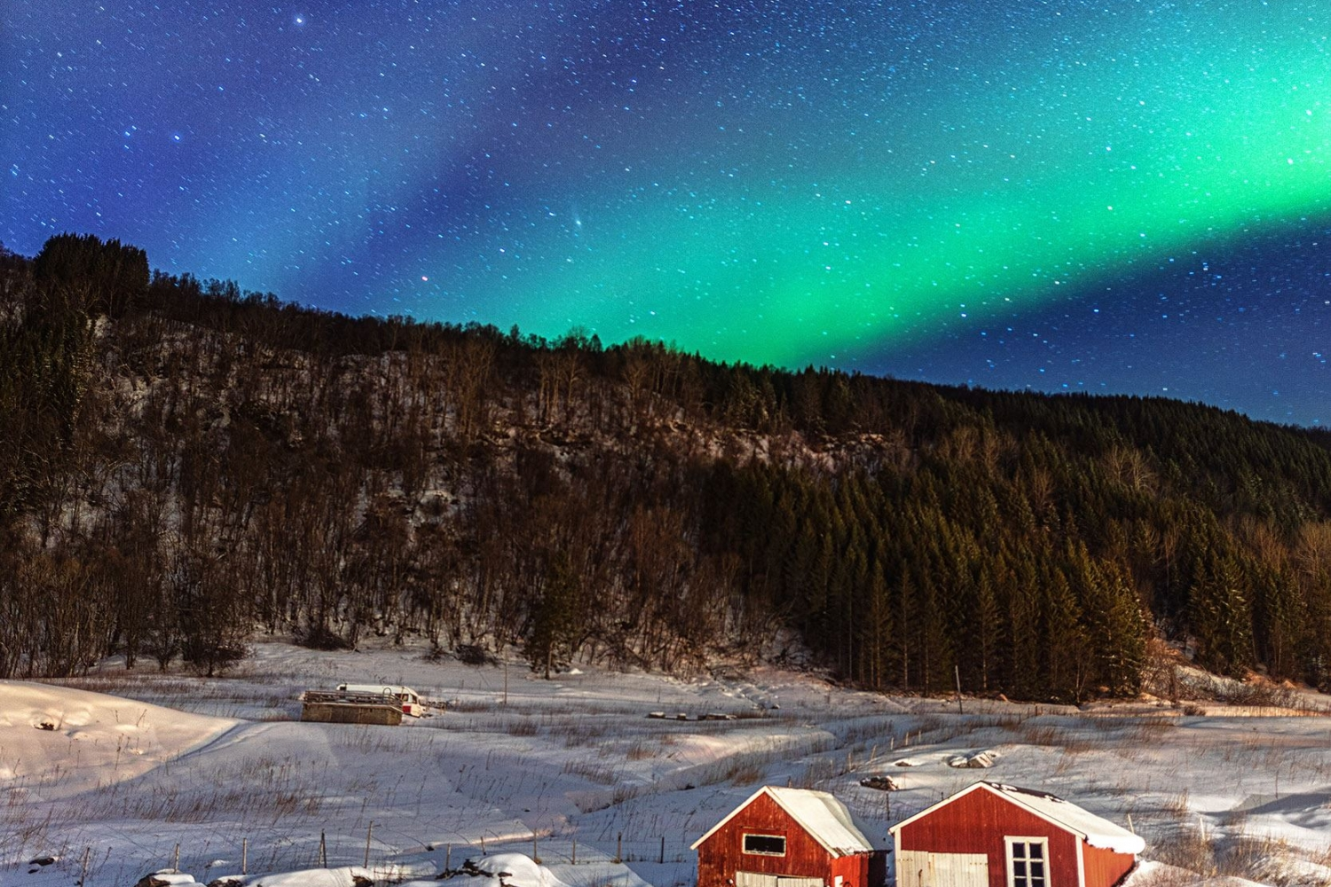 Northern Lights over farm and forest