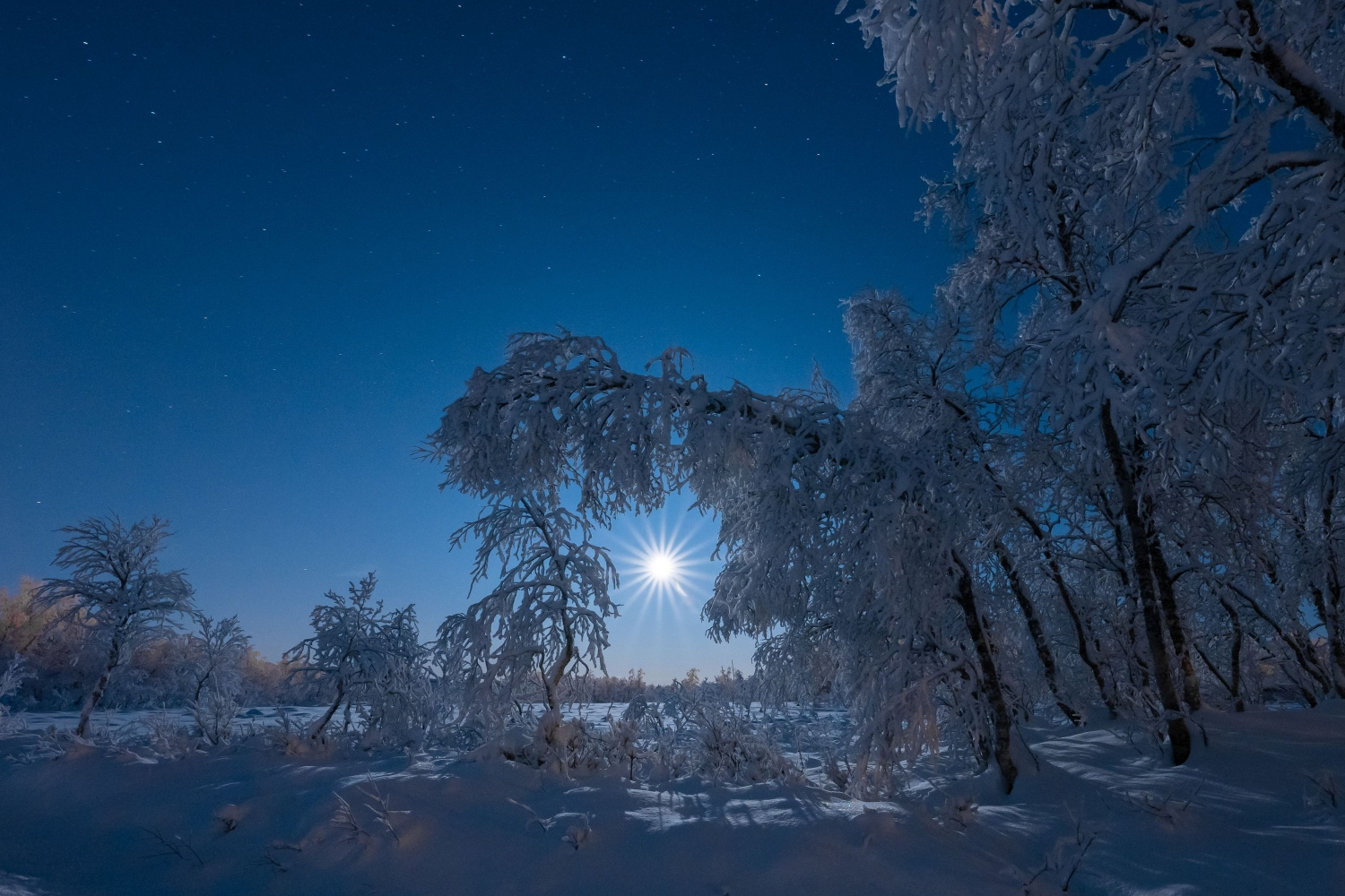 Arctic light and moonlight in snowy arctic landscape